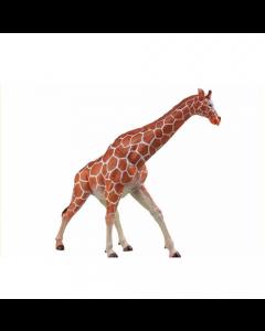 Replica Giraffa Camelopardalis Soft in PVC di Edilio Parodi